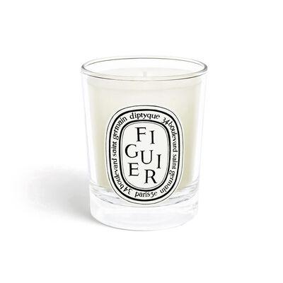 Mini Candle Figuier