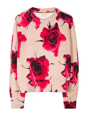 Women's 'Monarch Rose' Print Cotton Sweatshirt, , hi-res