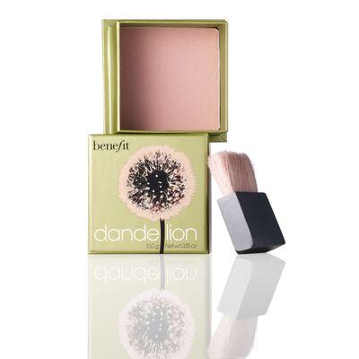 Dandelion Powder